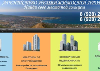 портал для агенства недвижимости